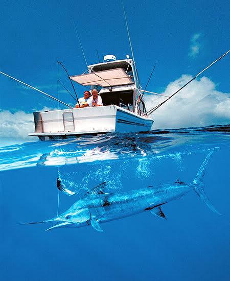 катера для рыбной ловли на море